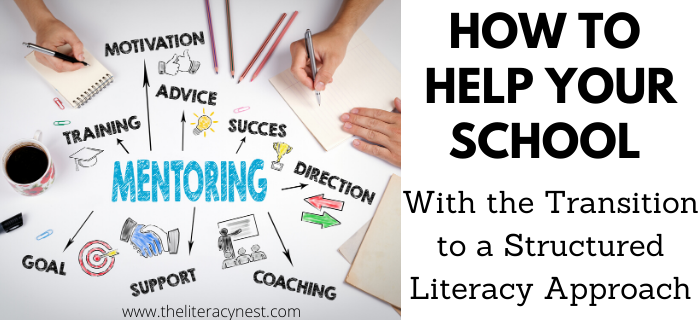 A Structured Literacy Approach: How to Help Your School With Making The Transition